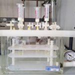 Analisi delle ammine come markers di shelf-life tramite purificazione su cartucce SPE (estrazione su fase solida)